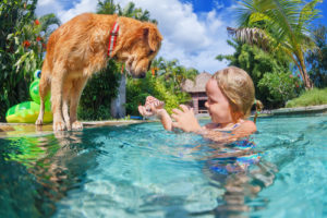 How to Keep Kids and Pets Cool on a Hot Summer Day
