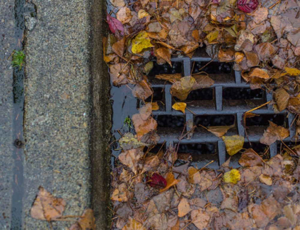 When Do You Need Storm Drain Cleaning?